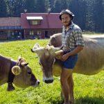 Hannes beim Vieh